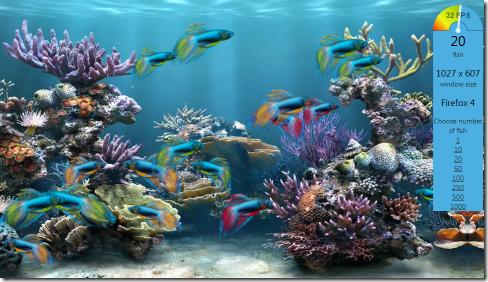 screen_fish