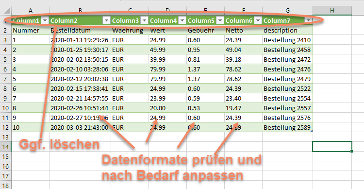 Screenshot der importierten Daten in Excel
