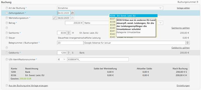 Screenshot Eingabemaske Buchhaltungssoftware