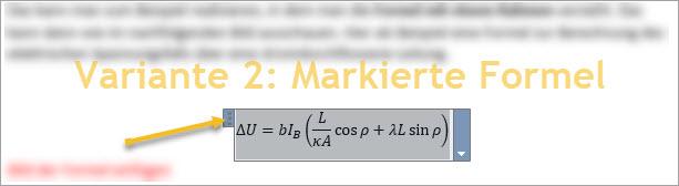 Screenshot Word Formel-Objekt auswählen